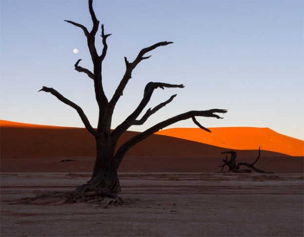 Deadvlei - desert homestead - their website2
